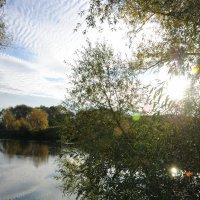 Золотая осень :: Олег