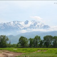 Гляжу я на горы, и горы глядят на меня... :: Anna Gornostayeva
