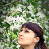 весна :: Александр Клименко