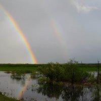 Майская радуга :: Вера Андреева