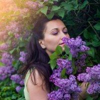 Сиреневая весна :: N. Efimkina