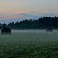 Туманы августа особенно грустны... :: mike95