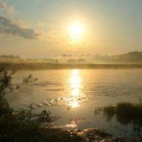 На реке рассвет розоватый чуть. И туман лежит на воде. :: Павлова Татьяна Павлова