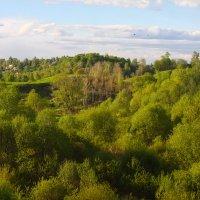 Майский пейзаж :: Денис Матвеев