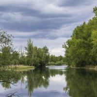 Весенняя протока :: юрий Амосов