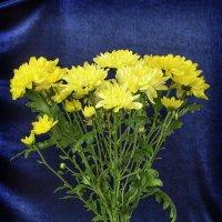 цветок, еще цветок и вот уже букет :: Наталья Понурко