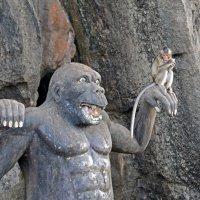 Я Кинг Конга не боюсь... :: Виктор Льготин