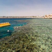 Коралловый берег :: Марсель Давлетов