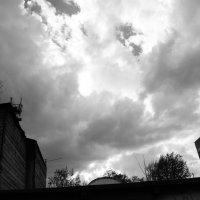 Вот это затянуло. :: Света Кондрашова