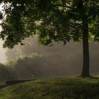 Пронзая светом утренний туман... :: Олег Козлов