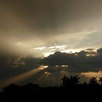 Крокодил  Солнце в небе проглотил!» :: Олег Дейнега