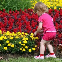 ой,сколько цветочков :: Олег Лукьянов