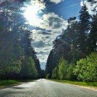Дорога через лес :: elmomonster Ozhogin