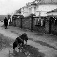 жажда.... :: павел Труханов