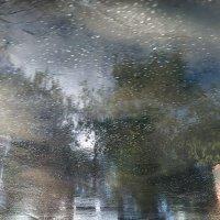 Прошел майский ливень. :: Валерий Молоток