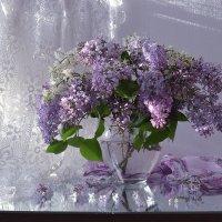 ..Весна с кружевами сирени... :: Валентина Колова