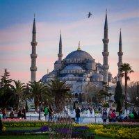 Закат над голубой мечетью :: ssv9 ...
