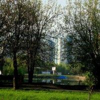 Озеро :: Лебедев Виктор