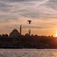 Стамбул :: Владимир Целищев