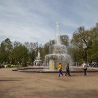 Петергоф. Праздник открытия фонтанов :: Эльмира Суворова