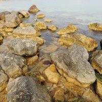 Каменистый пляж :: Nyusha