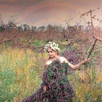 помощь саду... возрождение! :: Райская птица Бородина