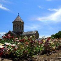 женский монастырь Бодбе. Грузия :: Елена Познокос