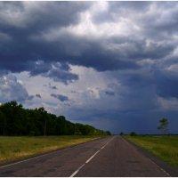 Дорога....перед бурей.... :: Svetlana Kravchenko