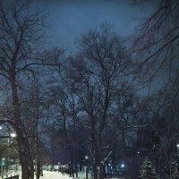 Вечерняя прогулка :: Денис Масленников