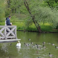В парке :: Mariya laimite