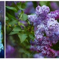 Сиреневая весна :: Юлия Федорова