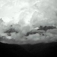 Кавказ :: Елена Познокос