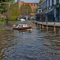 Tulips in Holland 04-2015 Amsterdam 7 :: Arturs Ancans