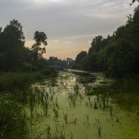 Колпино - «Город воинской славы» :: Илья Сычев