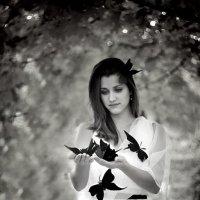 Чёрные бабочки :: Олеся Стоцкая