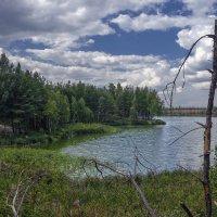 К озеру :: sorovey Sol