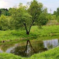 У реки. :: Надежда Баликова