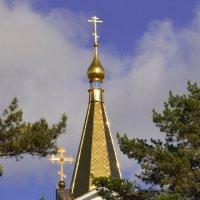 Золотые купола. :: cfysx