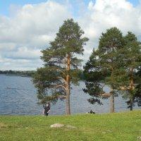 Озеро. :: Мила