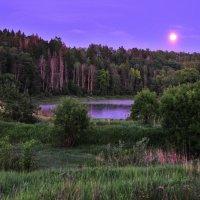 Летний вечер :: Андрей Куприянов
