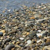 Морские камешки :: nika555nika Ирина