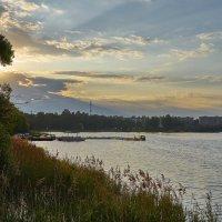 Если утром золотистым прогуляться над рекой, из ручья воды напиться и вдохнуть туман хмельной... :: Михаил (Skipper A.M.)