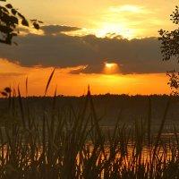 закат на озере :: sergej-smv
