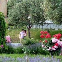 В Райском саду :: Наталья (D.Nat@lia) Джикидзе (Берёзина)