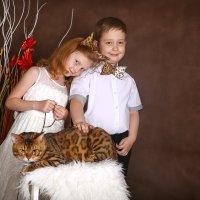 """Проект""""Кошки"""" :: Оксана Зарубина"""