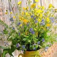 Не дари мне  цветов покупных, подари мне букет луговых... :: Ната Волга