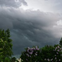 скоро грянет буря... :: Galina