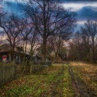 Покинутая деревня :: Наталья Золотарева