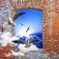 Мирного неба над головой :: Константин Снежин