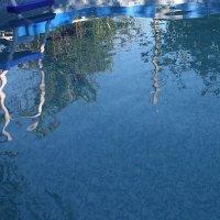 Вот  и воду  в  бассейн налили..  а  всё  холодно... :: Валерия  Полещикова